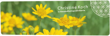 christine-koch